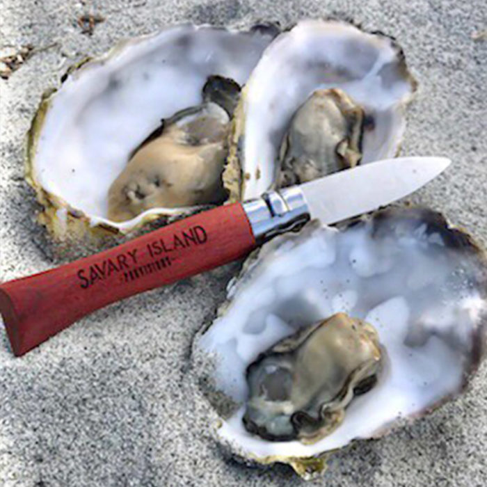 The SIP No.9 Opinel Oyster Knife at the Beach